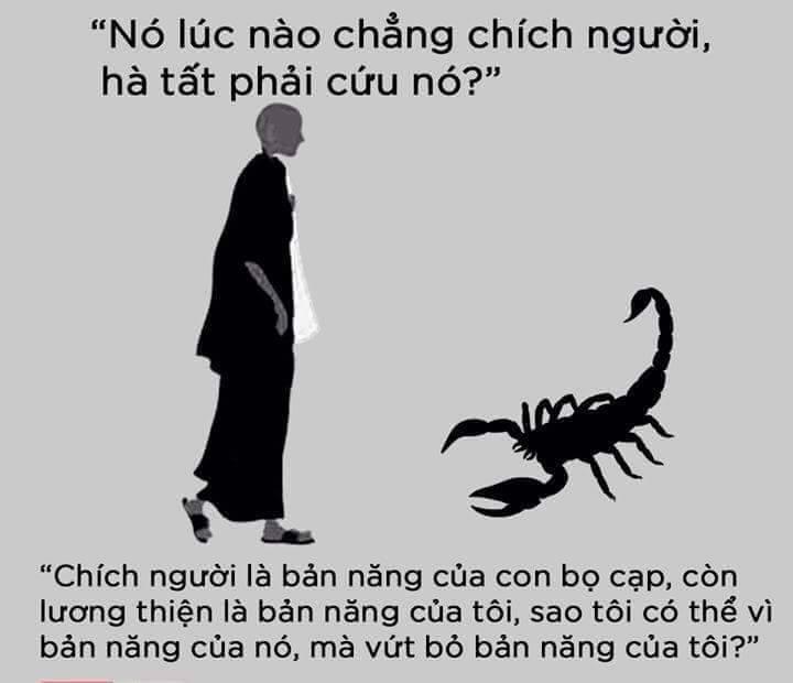 thien-su-bo-cap